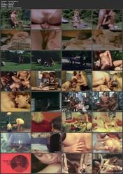 copnag8z9blp Sex Orgy 806